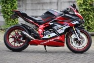 Modifikasi Honda CBR250RR, Totalitas Adopsi Pro Arm